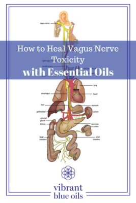 how to heal vagus nerve toxicity with essential oils